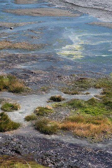 Small ponds (Photo: Tom Pfeiffer)