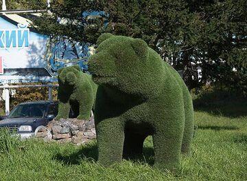 Kamchatka's symbols: bears and... (Photo: Tom Pfeiffer)
