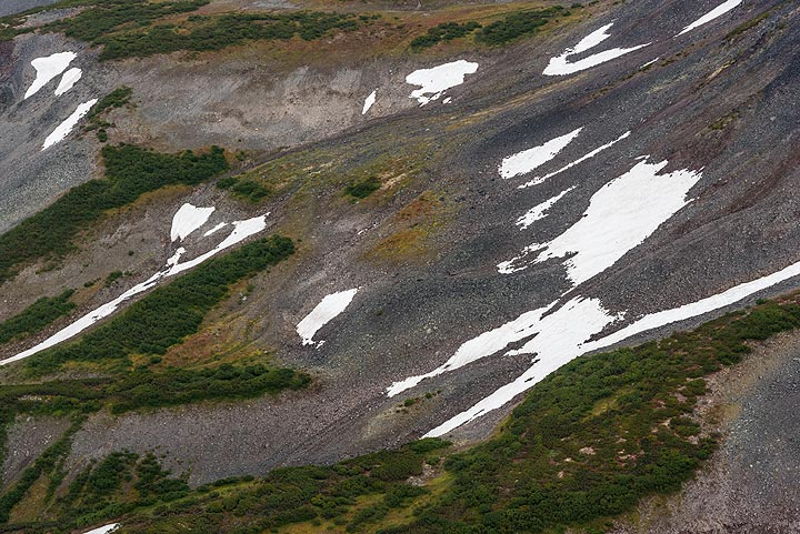 Alpine tundra with patches of snow (Photo: Tom Pfeiffer)