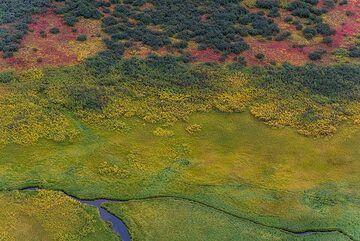 Green meadow (Photo: Tom Pfeiffer)