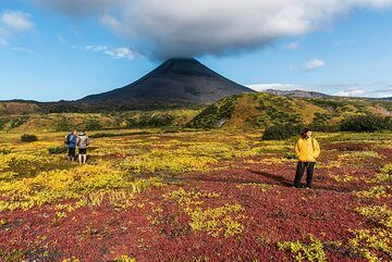 Exploring the surroundings of the hut leads to a wonderful red field. (Photo: Tom Pfeiffer)