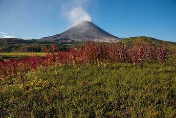Green and red tundra colors with steaming Karymsky volcano. (Photo: Tom Pfeiffer)
