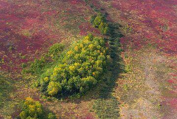 Green island (Photo: Tom Pfeiffer)