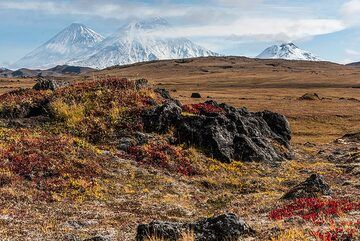 Tundra with Klyuchevskoy (l), Kamen (m) and Bezymianny (r) volcanoes. (Photo: Tom Pfeiffer)