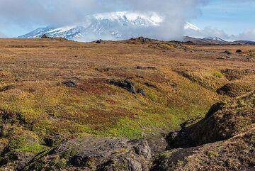 Ushkovsky volcano behind the tundra plain. (Photo: Tom Pfeiffer)