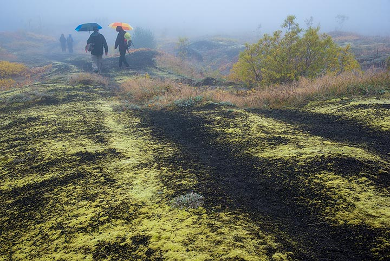 ...walking in the rain (Photo: Tom Pfeiffer)