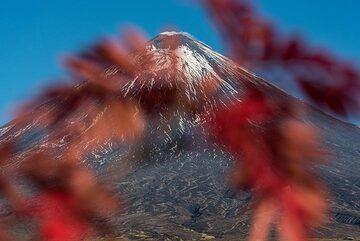 View towards the summit (Photo: Tom Pfeiffer)
