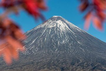 Klyuchevskoy volcano with a red tree (3) (Photo: Tom Pfeiffer)