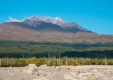 View towards Sheveluch volcano (Photo: Tom Pfeiffer)