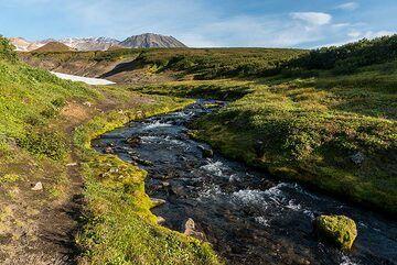 Stream near the hut (Photo: Tom Pfeiffer)