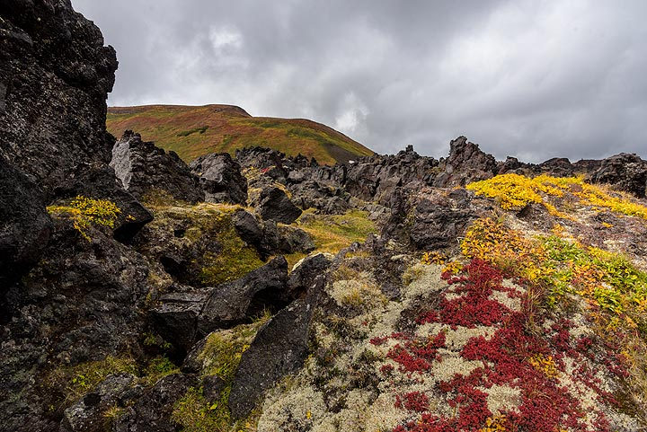 Irregular surface of an old lava flow from Gorely (Photo: Tom Pfeiffer)