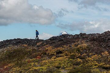 Andrej on a lava ridge with Viliuchinsky volcano in the background. (Photo: Tom Pfeiffer)