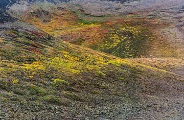 Smooth surfaces of tundra created by centuries of erosion and weathering (Photo: Tom Pfeiffer)
