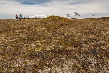 Walking through the tundra with such views is pure pleasure. (Photo: Tom Pfeiffer)