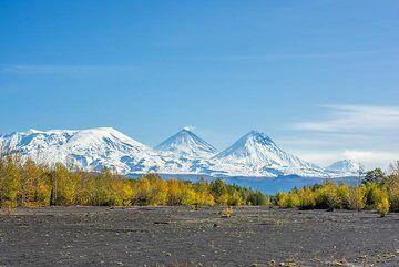 The northern group of volcanoes (Ushkovsky, Klyuchevskoy, Kamen and Bezymianny, l-r) seen from the south. (Photo: Tom Pfeiffer)
