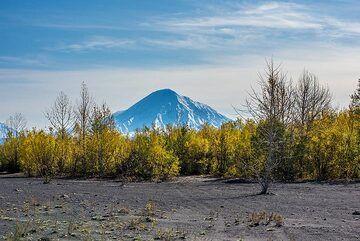 kamchatka_k24901.jpg (Photo: Tom Pfeiffer)