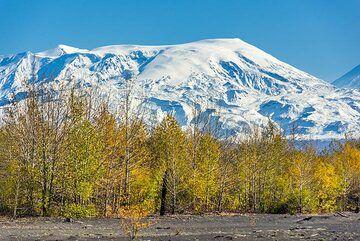 kamchatka_k24905.jpg (Photo: Tom Pfeiffer)