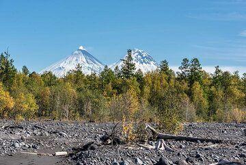 kamchatka_k24930.jpg (Photo: Tom Pfeiffer)