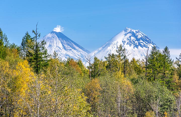 Klyuchevskoy and Kamen volcanoes behind the forest line (Photo: Tom Pfeiffer)