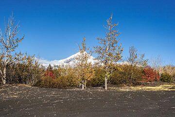 kamchatka_k25214.jpg (Photo: Tom Pfeiffer)