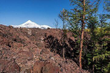 kamchatka_k25272.jpg (Photo: Tom Pfeiffer)