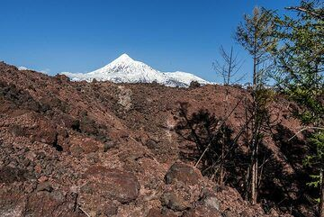 Margin of the 2012-13 lava flow with Tolbachik volcano in the background. (Photo: Tom Pfeiffer)