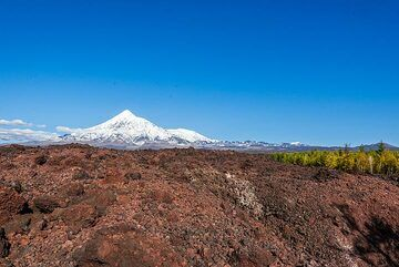 View towards Tolbachik from the vast 2012-13 lava flow (Photo: Tom Pfeiffer)