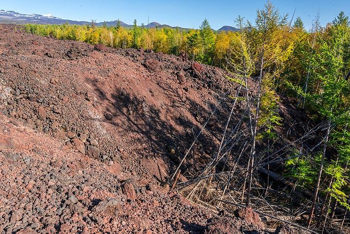 kamchatka_k25282.jpg (Photo: Tom Pfeiffer)