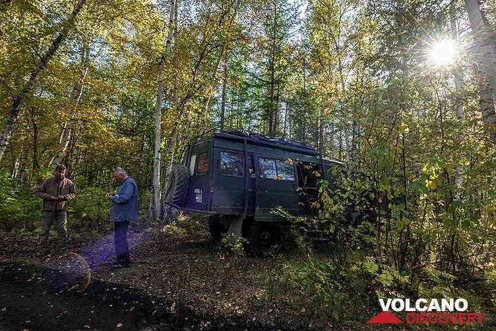 Break in the forest (Photo: Tom Pfeiffer)