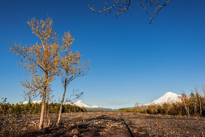 View from the river valley towards the volcanic group (Photo: Tom Pfeiffer)