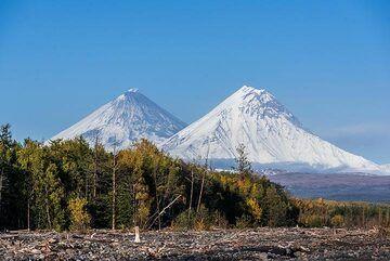 kamchatka_k25302.jpg (Photo: Tom Pfeiffer)