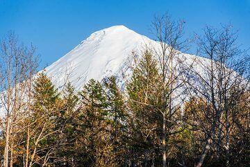 Tolbachik volcano behind trees (Photo: Tom Pfeiffer)