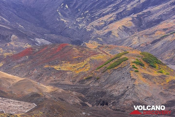 Colorful volcanic grounds (Photo: Tom Pfeiffer)