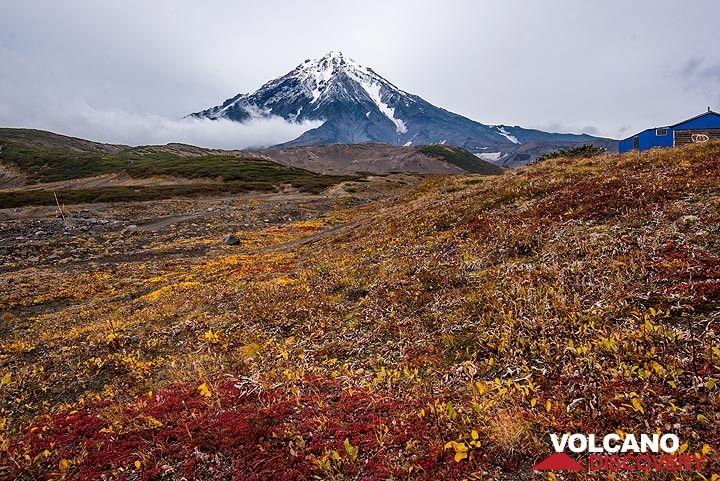Koryaksky volcano and tundra (Photo: Tom Pfeiffer)