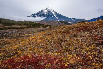 Some impressions taken during our recent Kamchatka expedition in Sep 2019: Excursion to the saddle between Koryaksky and Avachinsky volcanoes: