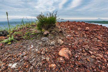 Oxidized lapilli and lava bombs on the summit of Taketomi. (Photo: Tom Pfeiffer)