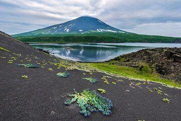 Alaid volcano (Photo: Tom Pfeiffer)