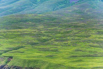 The flat lower slopes of Alaid volcano (Photo: Tom Pfeiffer)