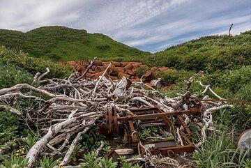 Old rusting oil barrels (Photo: Tom Pfeiffer)