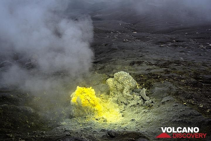 Bright sulphur fumarole (Photo: Tom Pfeiffer)