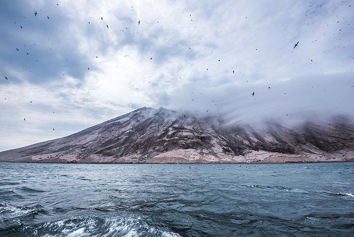 Strong and shifting winds make it impossible to find a safe anchorage, unfortunately. (Photo: Tom Pfeiffer)