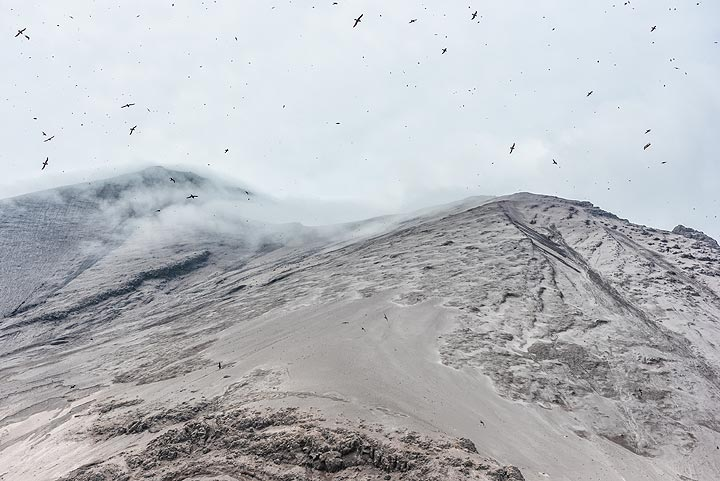 The crater of the volcano was still emitting lots of gas, making it very uncomfortable staying downwind. (Photo: Tom Pfeiffer)