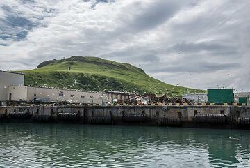 One of the piers of the harbour (Photo: Tom Pfeiffer)