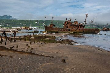 Remnants of a shipwreck almost completely buried in the sand (Photo: Tom Pfeiffer)