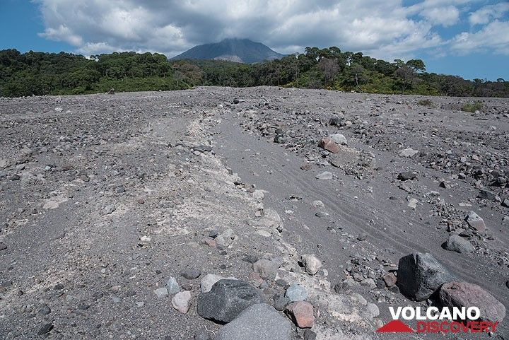 The pyroclastic flow deposit at the exit of the Montitlán ravine; its surface is still barren, but small fluvial channels have started to form. (Photo: Tom Pfeiffer)
