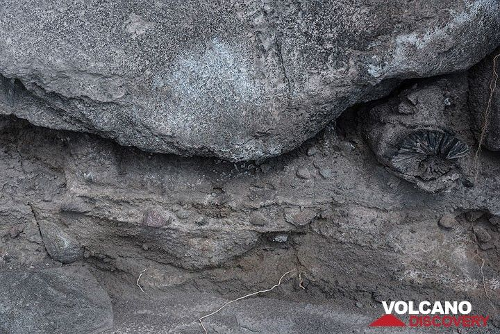 View of the fine-grained base layer of the block and ash flow (upper portion of section). (Photo: Tom Pfeiffer)