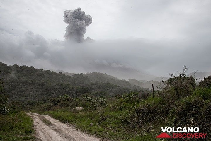 Explosion at Colima, seen from La Yerbabuena in the evacuated zone west of the volcano. (Photo: Tom Pfeiffer)