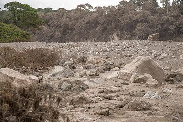 Boulders of meter size, once part of the lava dome on top of the volcano 10 km away, have been transported by the flow. (Photo: Tom Pfeiffer)