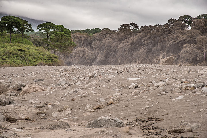 View towards the ravine through which the pyroclastic flow entered the widening, flatter area. (Photo: Tom Pfeiffer)
