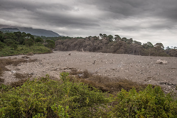 View of the flow deposit. (Photo: Tom Pfeiffer)